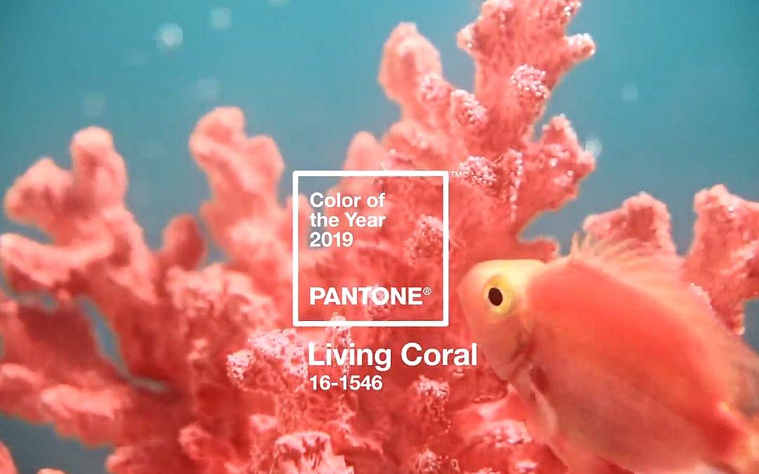 Bring life to your home with the new color Pantone 2019